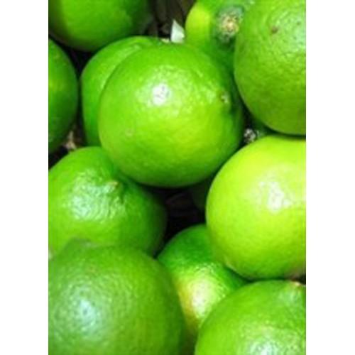 Groene citroen of limoen bio