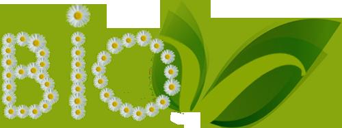 Logo Bio V.png