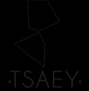 logo-tsaey.png